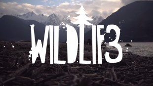 "Def3 – ""Wildlif3″ Prod. By Factor"