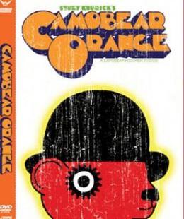 camobear-orange-dvdcd